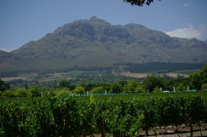 Time to explore...Somerset West to Stellenbosch